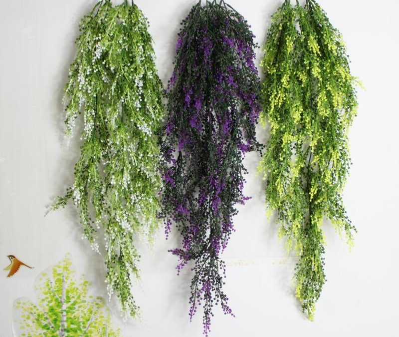 Top 7 Hanging Plants for Your Home