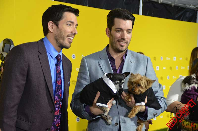 the property brothers with one holding the puppies