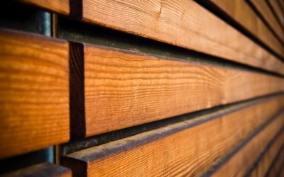 Wood Paneling: The Top Options Today